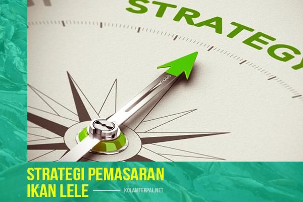 strategi-pemasaran-bisnis-ikan-lele