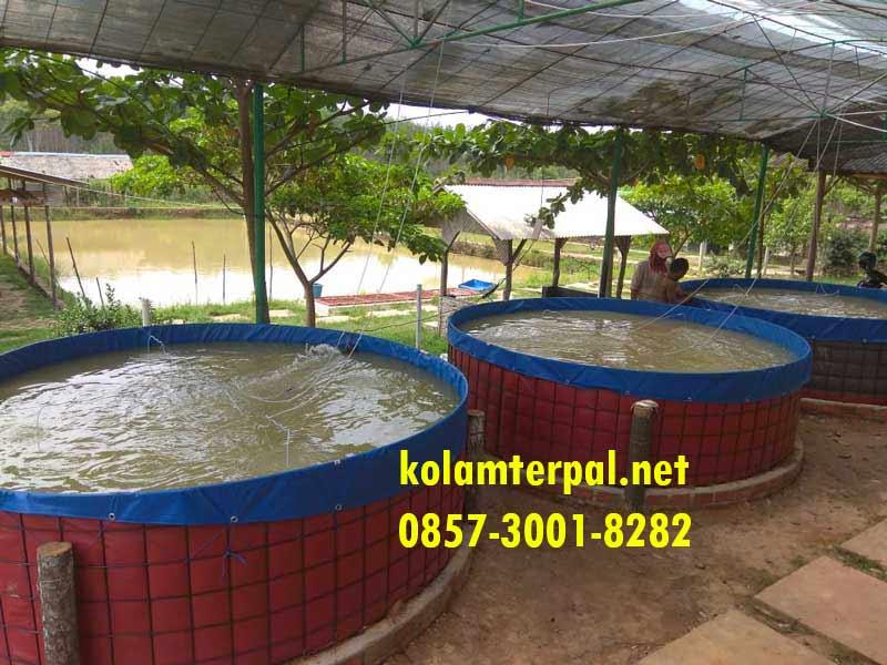 Jual Kolam Terpal Bulat Siap Pakai Fullset Makassar