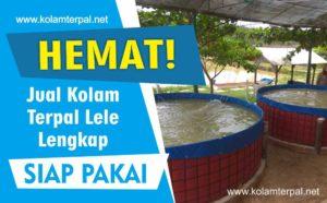 Jual Kolam Terpal Lele Lengkap Siap Pakai Jakarta