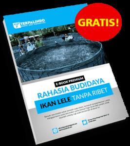 Cover-Ebook-Premium-Panduan-Budidaya-Ikan
