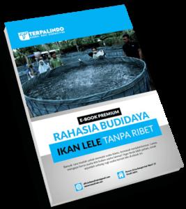 Cover Ebook Premium Panduan Budidaya Ikan